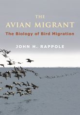 The Avian Migrant – The Biology of Bird Migration - Columbia Scholarship Online